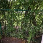 fence-company-chain-link-fence-fence-install-boca-raton-33498