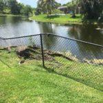 cooper-city-33328-fence-contractor-handyman-fence-repair-fence-company-general-contractor