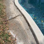 pool-grounding-tamarac-33321-electrician-general-contractor-handyman