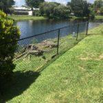 fence-contractor-fence-repair-handyman-general-contractor-fence-company-cooper-city-33328